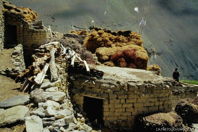 zanskar-voyage-blog-la-petite-aventure-15