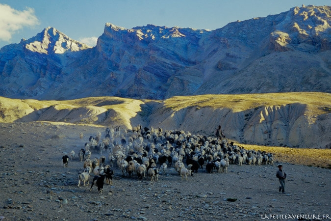 zanskar-voyage-blog-la-petite-aventure-4